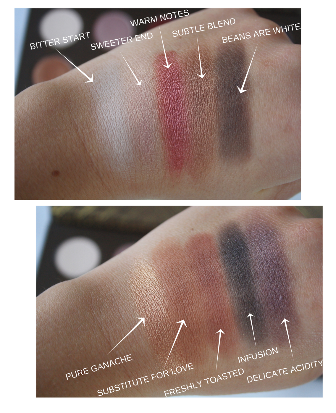 cocoa-blend-swatches